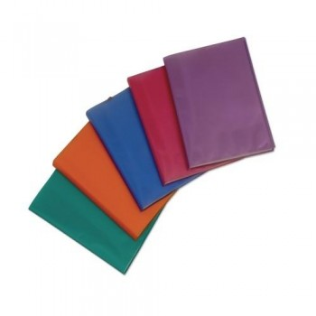 Carpeta 20 fundas A4 227x308mm. PP color surtido Active Supra ESENCIALES