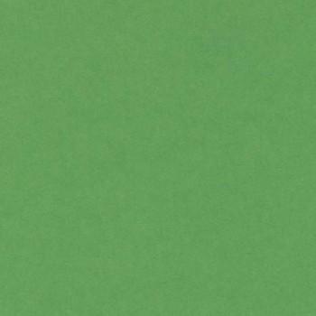 CARTULINA A3 185 GR. IRIS VERDE BILLAR ESENCIALES