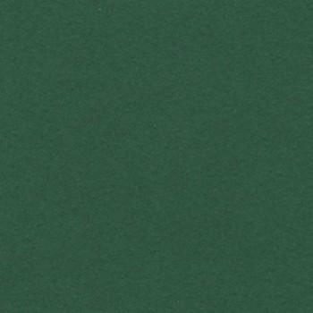 CARTULINA 500X650 185G VERDE SELVA IRIS ESENCIALES