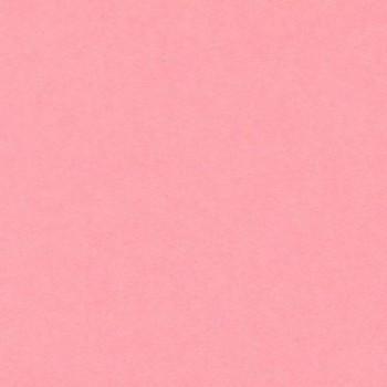 CARTULINA 500x650 185G ROSA IRIS ESENCIALES