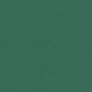CARTULINA 500x650 185G ABETO IRIS ESENCIALES